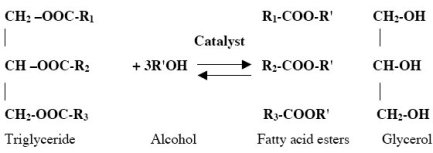 Fig-1-Transesterification-of-triglycerides-with-alcohol_W640